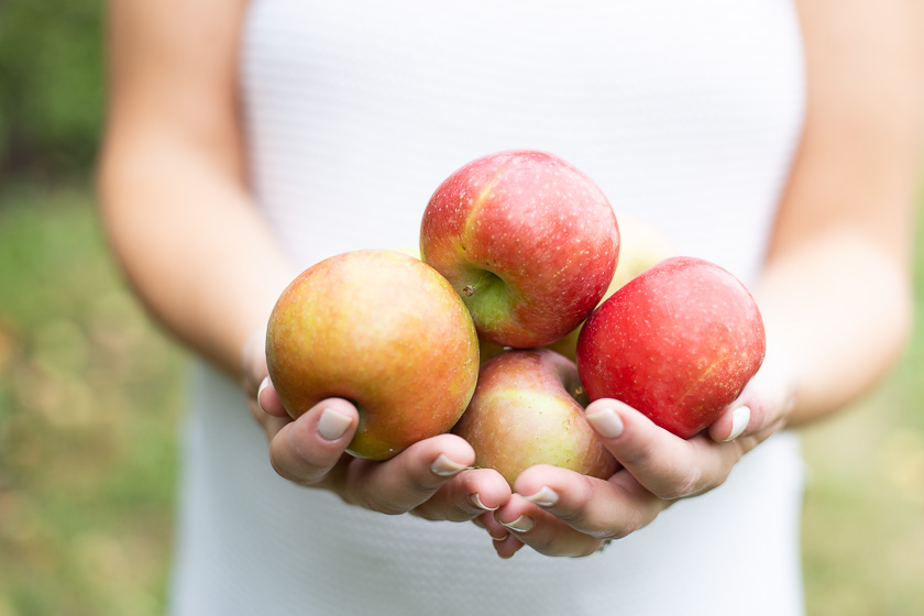 favorite fall activity picked apples
